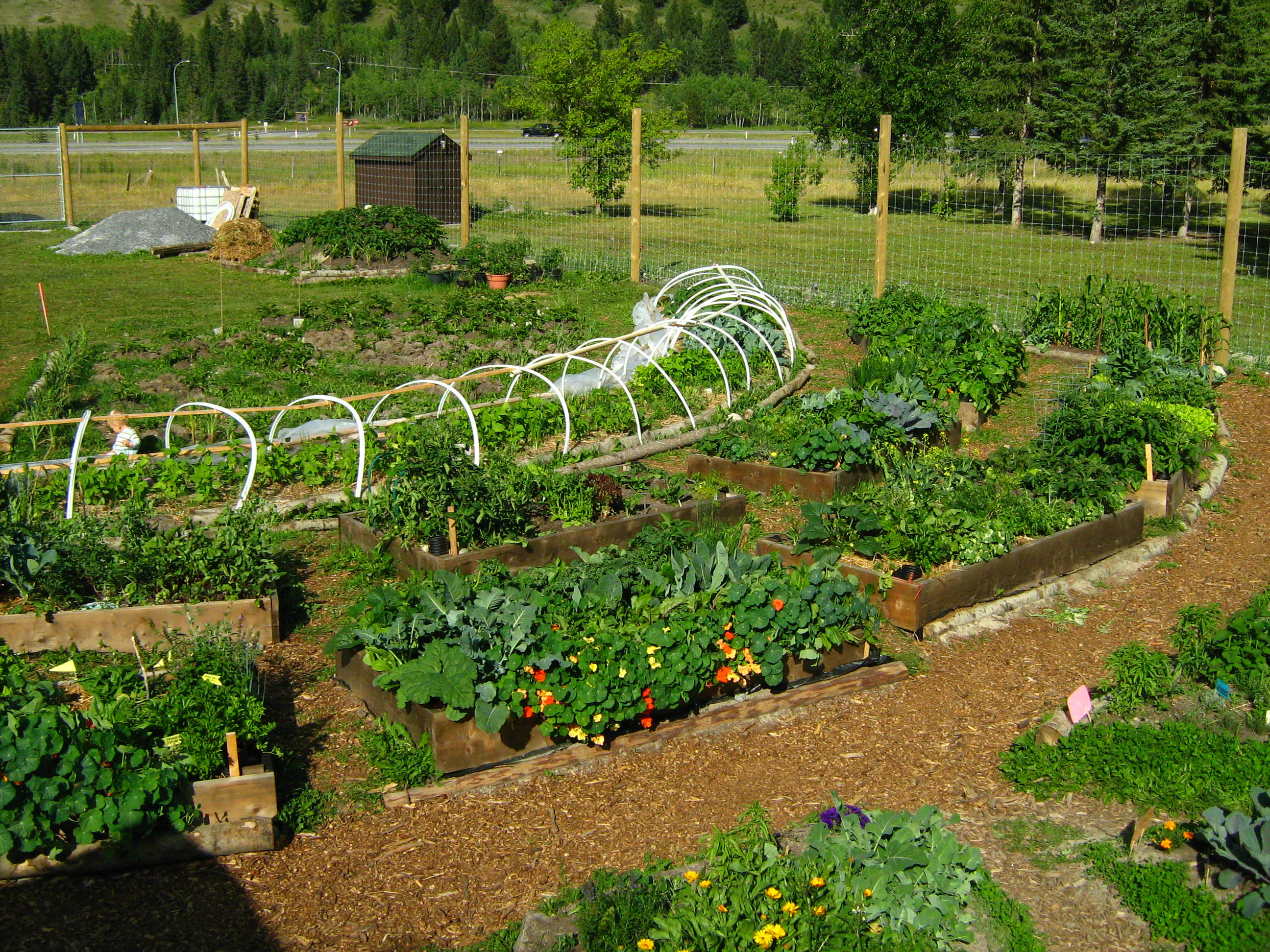 Garden Design: Garden Design with Vegetable Garden Design ...