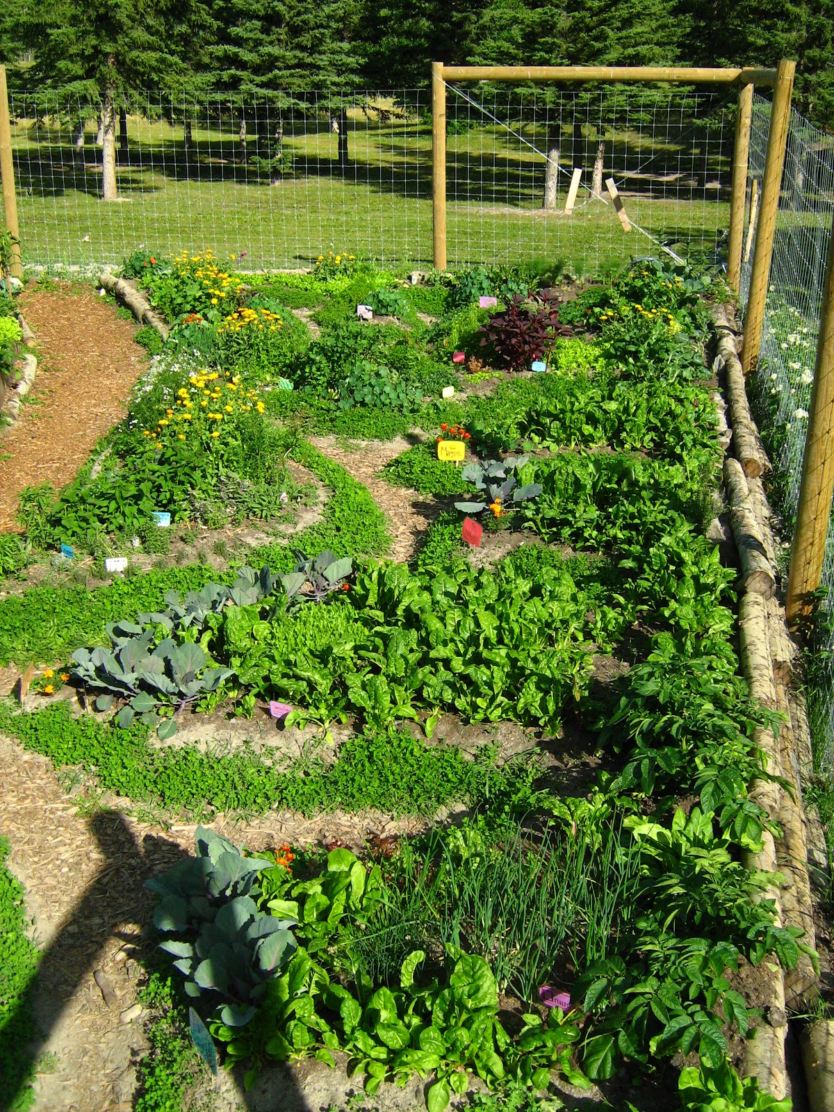 Fundamentals Of Permaculture Design